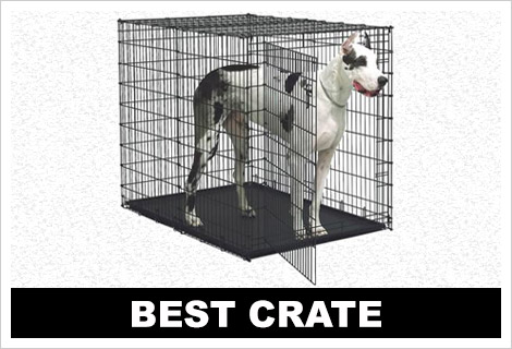 Best crates for Great Danes