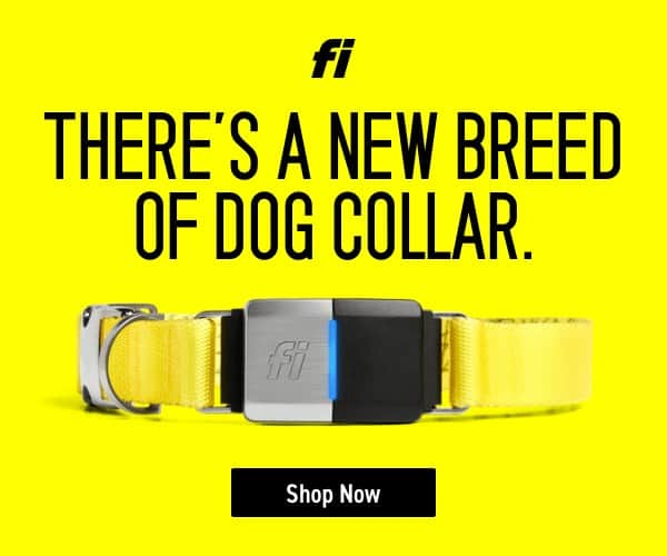 Fi Smart Collar Review