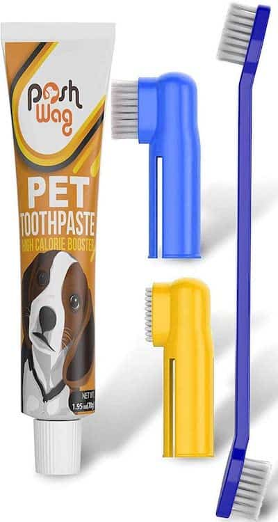 Dog Toothpaste and Toothbrush Set